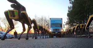 ربات اسپات 2020 در حمل و نقل